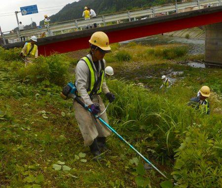 久慈川河川敷の草刈のようす